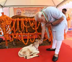 Prime Minister Narendra Modi to launch National Animal Disease Control Programme on 11th September 2019