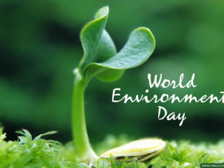 Virtual celebrations of the World Environment Day with focus on Urban Forest