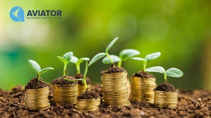 Aviator EMF strengthens investments in Indian NBFCs