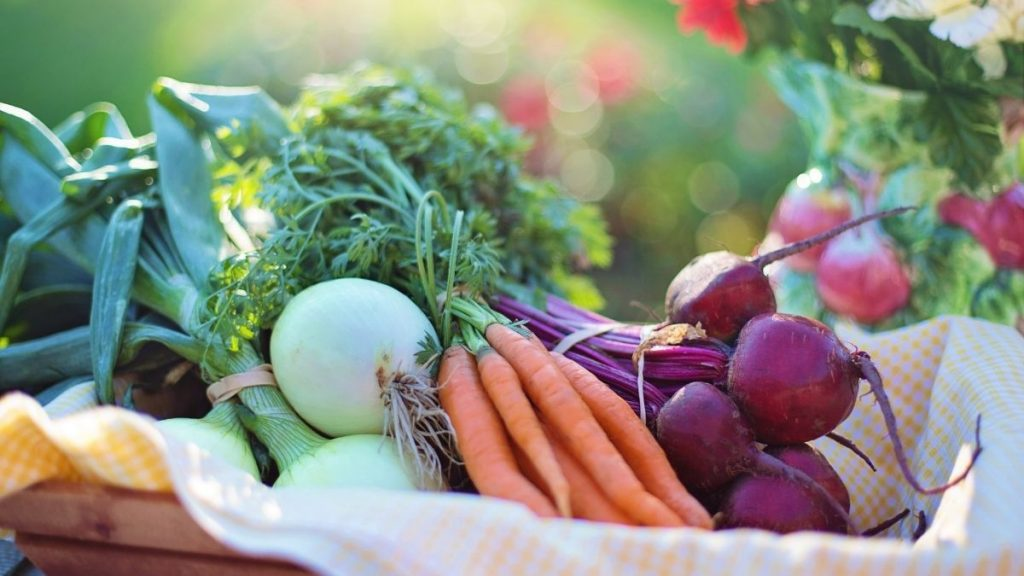 Vegetarians have healthier levels of disease markers than meat-eaters: Study