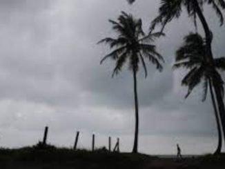 Kerala's Kottayam receives heavy rainfall, IMD issues yellow alert