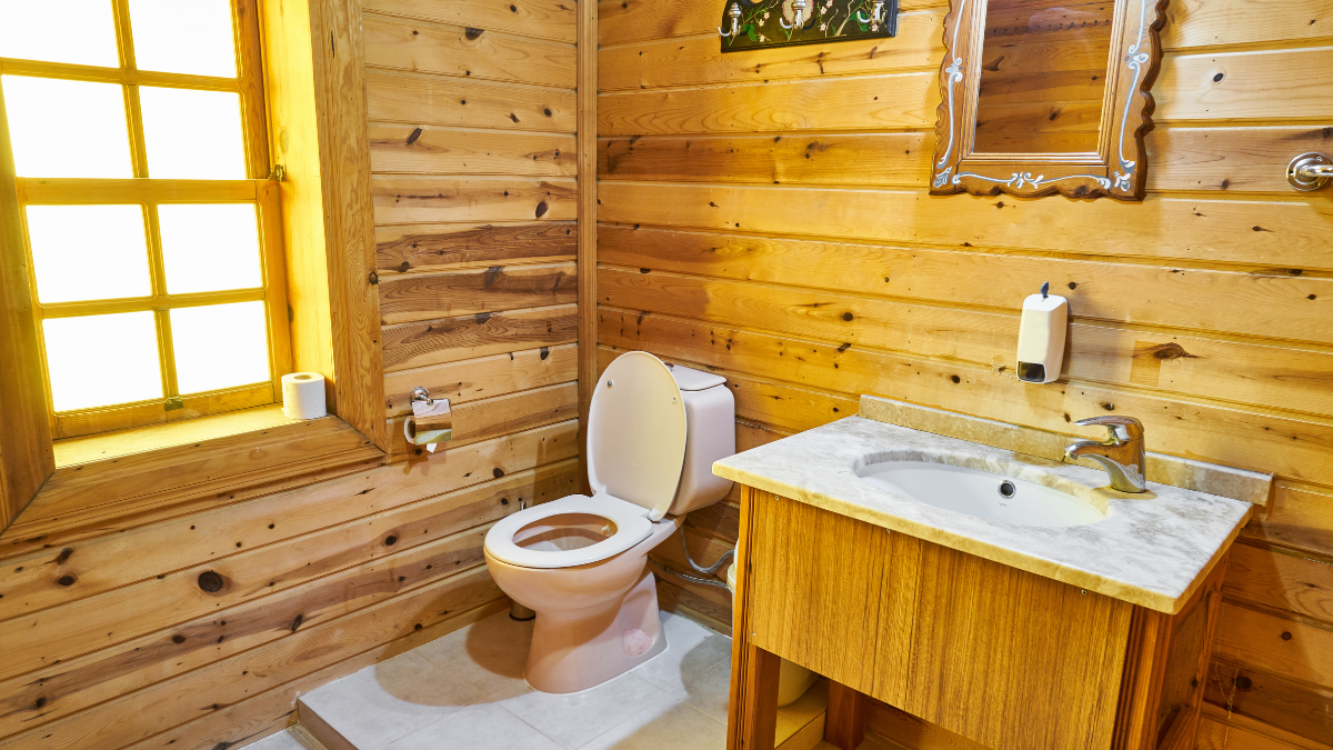 Study shows smart toilet may soon analyze stool for health problems