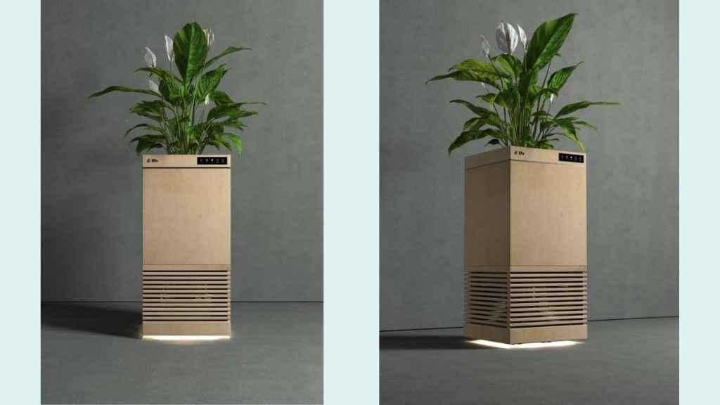 IIT Ropar and Kanpur Developed World's First 'Plant based' Smart Air-purifier