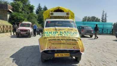 First consignment of Kashmiri walnuts from Budgam despatched